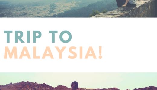 針なし蜜蜂のハチミツを求めて マレーシアへ!