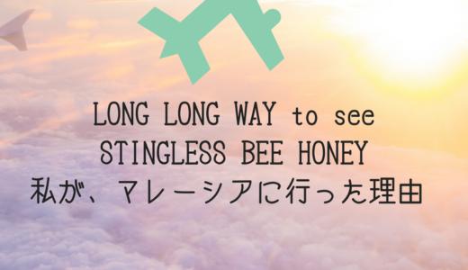 マレーシアの蜂蜜探し サラワク州・シブへ!